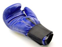 Boxing Glove blue Stock Images