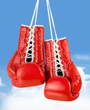 Boxing glove. Sports glove red hanging sport old lace Royalty Free Stock Photo