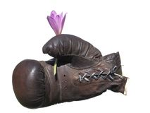 Boxing glove with flower . Stock Photography