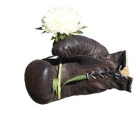 Boxing glove with flower . Stock Photos