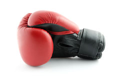 Boxing glove isolated on white Stock Image