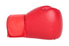 Boxing glove. Red boxing glove isolated on white background Stock Image