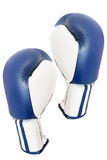 Boxing glove Stock Image