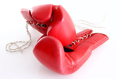 Boxing gloves. Red boxing gloves in white background Stock Photos