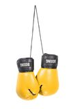 Boxing gloves. A pair of boxing gloves isolated on a white background Royalty Free Stock Image