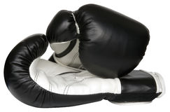 Free Boxing Gloves Royalty Free Stock Photos - 4738488