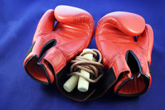 Boxing gloves. Red boxing gloves with a skipping rope set against a blue background Royalty Free Stock Photo