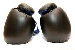 Boxing gloves Stock Images