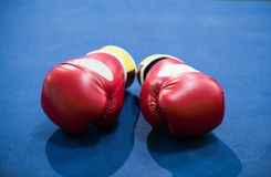 Boxing gloves are on the blue floor of the ring. Horizontal photo. stock photography