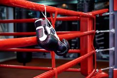 Boxing gloves in a boxing ring with bags in the gym royalty free stock photos