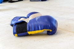 Boxing-gloves on the boxing ring Stock Images