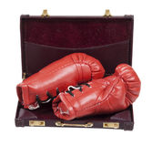 Boxing Gloves in a Briefcase Stock Images