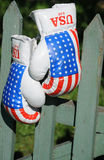 Boxing Gloves on the Fence Stock Images