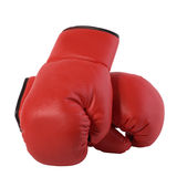 Boxing gloves and a flower. Red boxing gloves and a flower Royalty Free Stock Photos