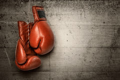 Boxing gloves hanging on concrete wall Stock Photos
