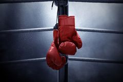 Free Boxing Gloves Hanging On The Ring Royalty Free Stock Image - 142282686
