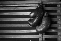 Boxing gloves hanging. On wooden wall Royalty Free Stock Photo
