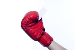 Boxing gloves holding empty business blank Royalty Free Stock Photos