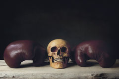 Boxing Gloves with human Skull laying on wooden Planks Stock Photo