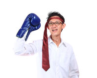 Boxing gloves man - concept showing aggressive female flexing mu Royalty Free Stock Image