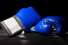 Boxing Gloves Stock Photos