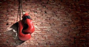 Boxing gloves Stock Photos
