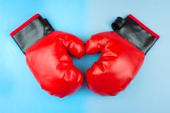 Boxing gloves and paw Stock Photography