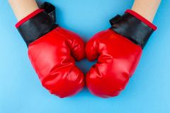 Boxing gloves and paw Stock Photo