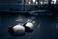 Boxing gloves in the ring stock photo