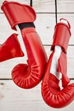Boxing Gloves. A studio photo of boxing gloves Royalty Free Stock Photography