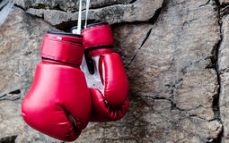 Boxing gloves are suspended on a rock Stock Images