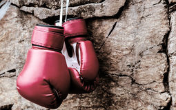 Boxing gloves are suspended on a rock Royalty Free Stock Photos