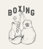 Boxing Gloves vector illustration. Print design t-shirt Royalty Free Stock Photo