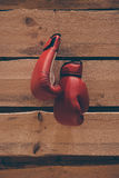 Boxing gloves on the wall. Stock Photography