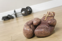 Boxing gloves and weights Stock Image