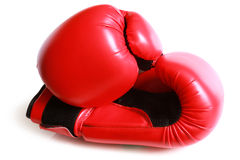 Boxing gloves. On white background Stock Images