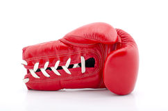 Boxing gloves with white blackground Stock Images