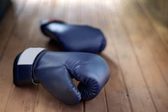 Boxing gloves. Royalty Free Stock Photography