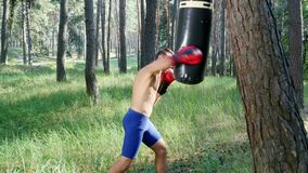 In boxing gloves, young athletic man with bare, naked torso, boxes, practices the technique of strikes, fight with stock video footage