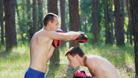 In boxing gloves, young athletic men with bare, naked torsos, box, practice the technique of strikes, capture, fight. Slow motion. In pine forest, in summer stock footage