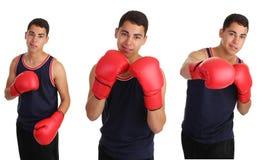 Boxing guy Stock Photo