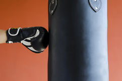 Boxing. A guy who hits the punching bag Stock Photography