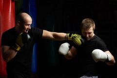 Boxing knockout concept. Two young men practicing boxing fight Stock Photos