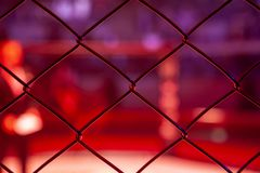 Boxing leading before a fight in the arena of the octagonal scene, view through the metal net. Man in the sports of mixed martial arts at the MMA tournament stock photography