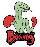 Boxing lizard Royalty Free Stock Image