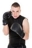 Boxing man Stock Photos