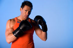 Boxing man. Royalty Free Stock Photography