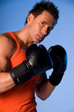 Boxing man. Attractive man wearing an orange top and boxing gloves holding his hands up to his face. Blue background stock image
