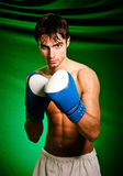 Boxing. Man in boxing gloves Stock Photos