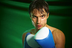 Boxing. Man in boxing gloves Royalty Free Stock Photos